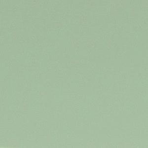 Blassgrün lackiert