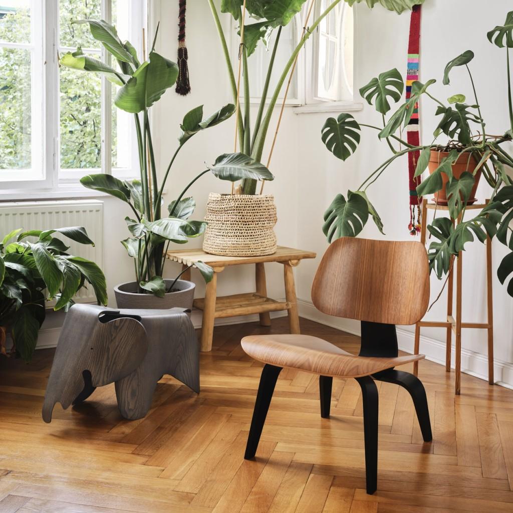 3981136_Plywood-Group-LCW-Eames-Elephant-Plywood-grey_master8hKXnzfEvT8da